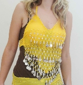 Belly Dance Costume great for Zumba, Bachelorette Parties, Lingerie and other great ideas.